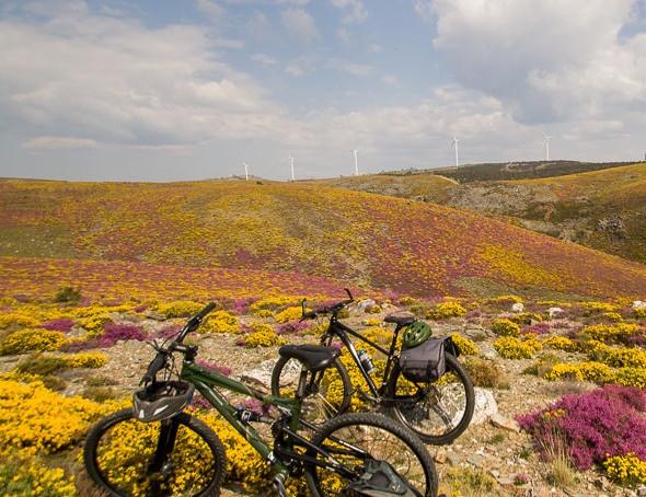 Freita Biking in Portugal