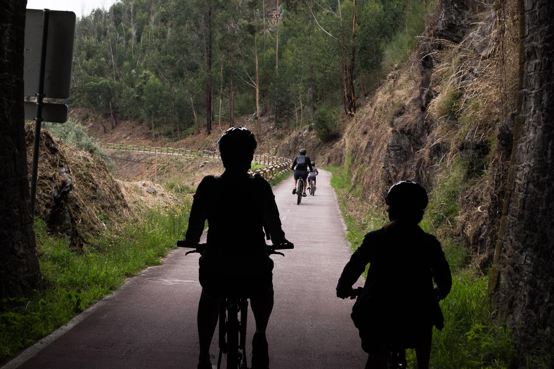 quatro pessoas a andar de bicicleta na ecopista do Vouga