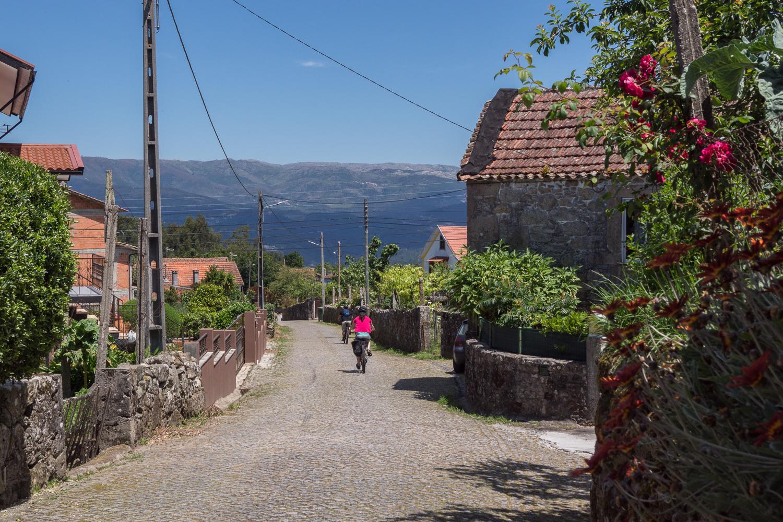 descida de bicicleta na Serra do Ladário, Vale do Vouga, Portugal